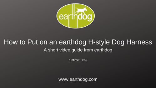 How To Put on an earthdog H-style Dog Harness